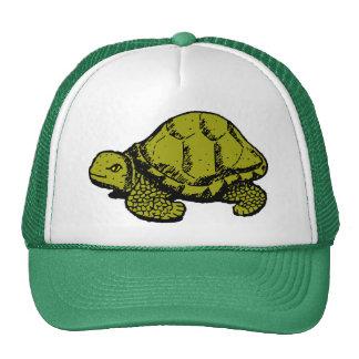 Turtle Graphic Trucker Hat