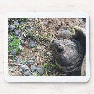 Turtle Head Mouse Pad
