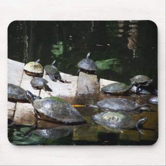 Turtle Heaven Mouse Pad