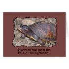 Turtle hello! card