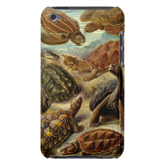 Turtle iPod Touch Barely There Case
