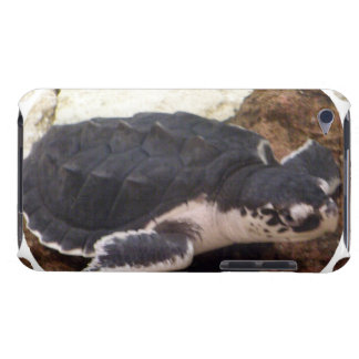 Turtle iTouch Case iPod Touch Cover
