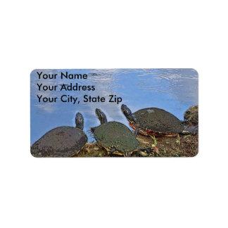 Turtle Mailing Label