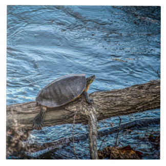 Turtle On A Log Tile