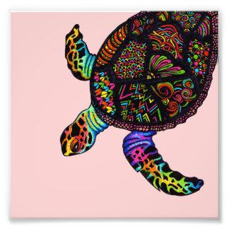Turtle Art Photo