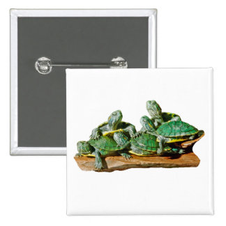 Turtle Picture Buttons