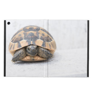 Turtle's shell pattern cover for iPad air