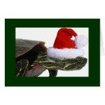 Turtle Santa Holiday Card