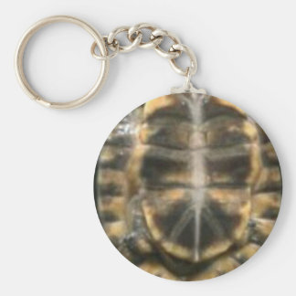 turtle shell basic round button key ring