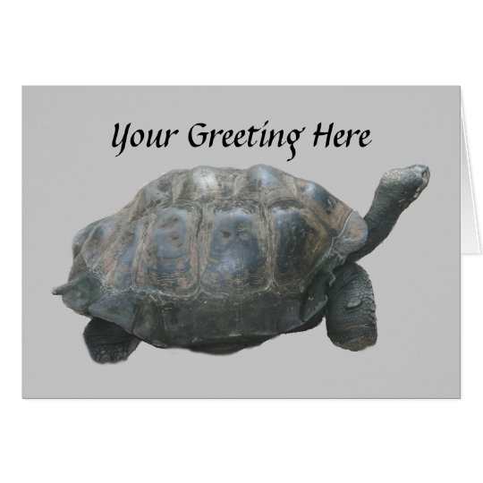 Turtle Slow Down Greeting Card