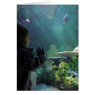 Turtle Tank Viewer Card