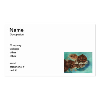 Turtle Time Business Cards