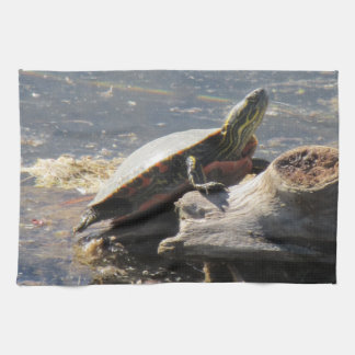 Turtle Towel