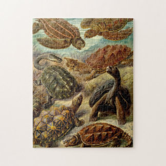 Turtles by Haeckel Jigsaw Puzzle
