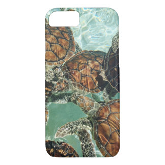 Turtles in Mexico (Kimberly Turnbull Photography) iPhone 8/7 Case