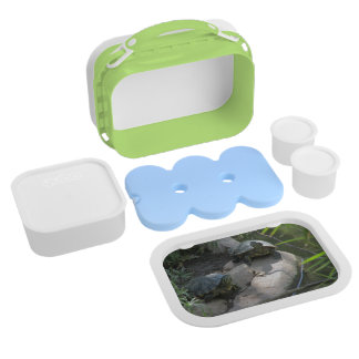 Turtles Lunch Box