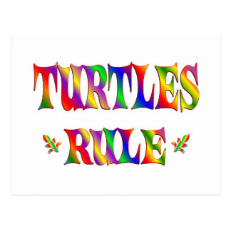 TURTLES RULE POSTCARD