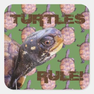 Turtles Rule! Square Sticker