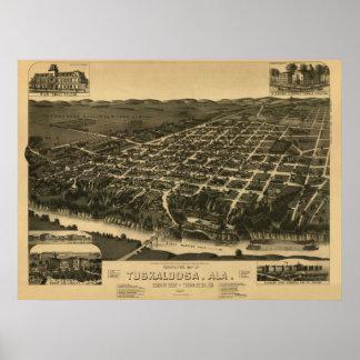 Tuscaloosa, AL Panoramic Map Vintage 1887 Poster
