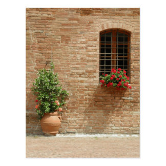 Tuscan pot n plants postcard
