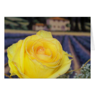 Tuscan Roses Card