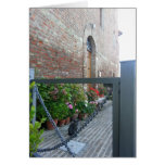 Tuscan Series Notecard: Grey Cat in the Garden Note Card