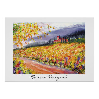 Tuscan Vineyard - poster