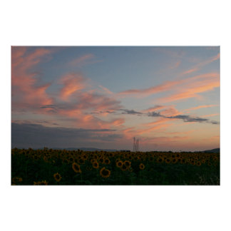 Tuscany Sky At Sunset Over Sunflower Field Italy Poster