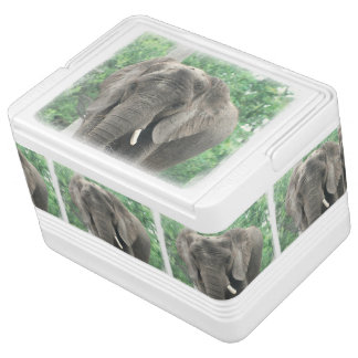 Tusked Elephant Igloo Can Cooler