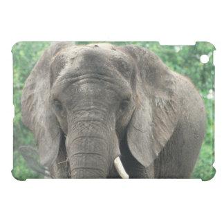 Tusked Elephant iPad Mini Cases