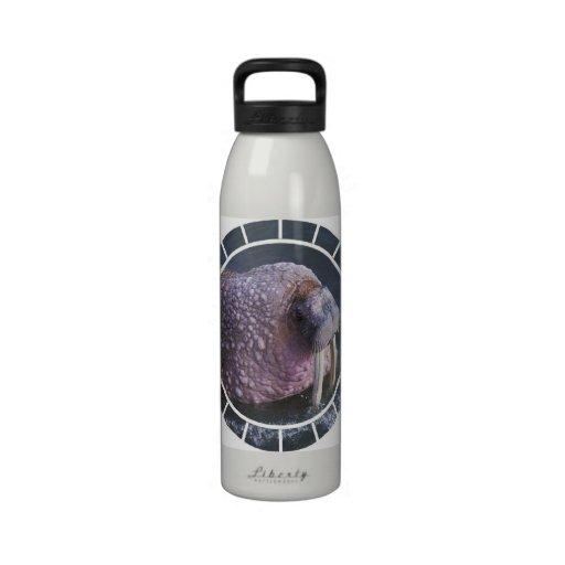 Tusked Walrus Water Bottle