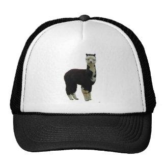 Tuxedo Alpaca Cap