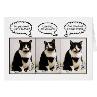 Tuxedo Cat Birthday Humor Card