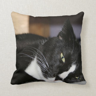 tuxedo cat black and white lying down one eye open cushion