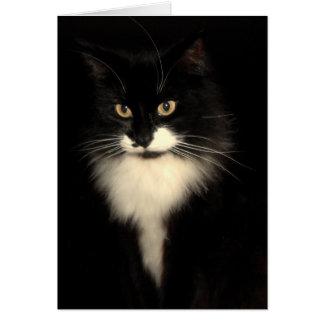 Tuxedo Cat Card