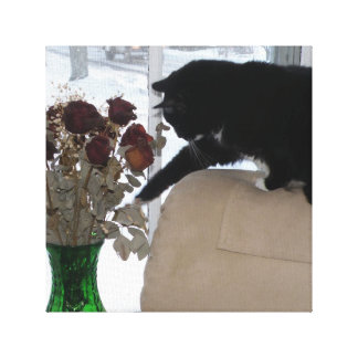 Tuxedo Cat Checks Out Dried Roses Canvas Print