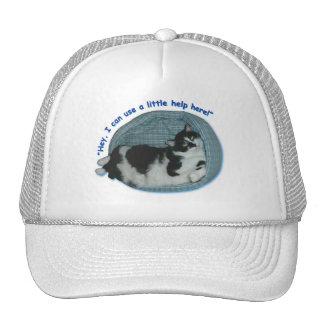 Tuxedo Cat Humor Trucker Hats