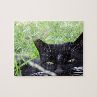 Tuxedo Cat in Grass - Jigsaw Puzzle