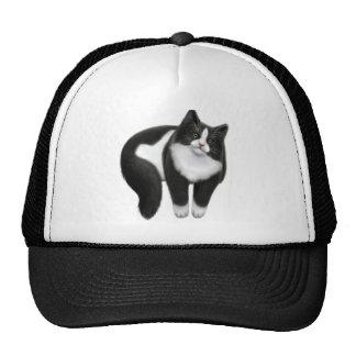 Tuxedo Cat on a Hat