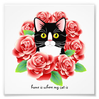 "Tuxedo Cat Roses Print ""home is where my cat is"" Photograph"