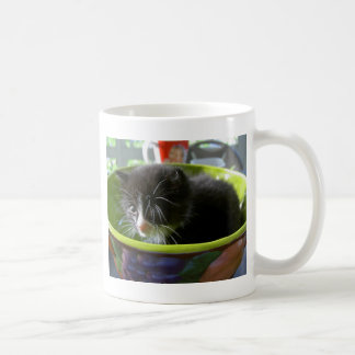 Tuxedo Kitten Cat Cute Baby Kitty with Whiskers Coffee Mug