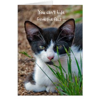Tuxedo kitten hiding behind grass card