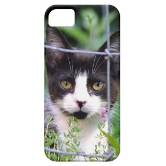 Tuxedo Kitten Xena in the Garden iPhone 5 Case