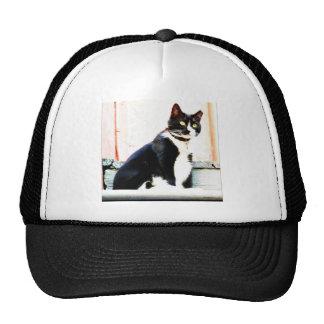 Tuxedo Kitty Cap