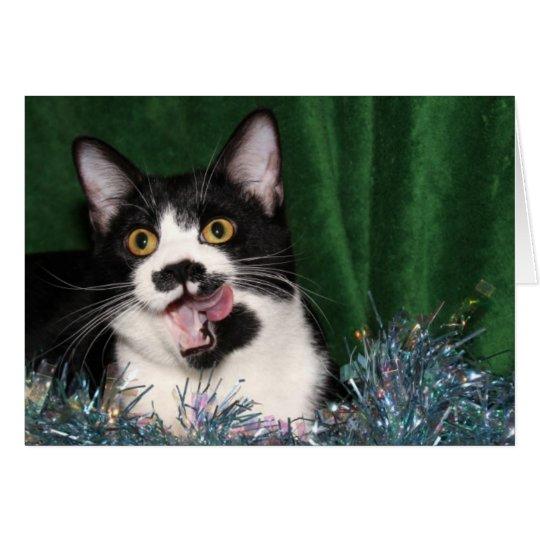 Tuxedo kitty Christmas Card
