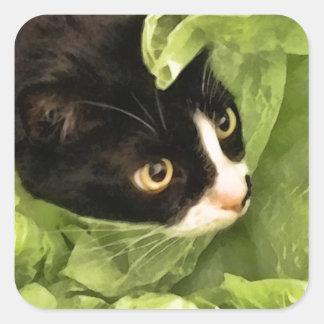 Tuxedo Kitty Hiding in Tissue Paper Square Sticker