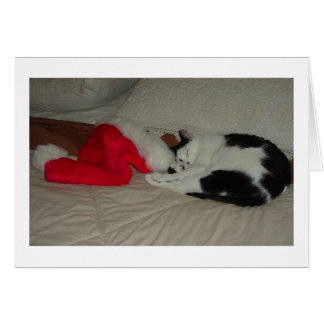 Twas the Night before Christmas Kitten Greeting Card