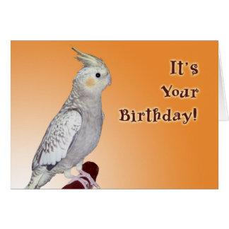Tweet Yourself Birthday Greeting Card