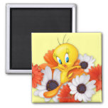Tweety With Daisies Square Magnet
