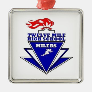 Twelve Mile, IN. High School Silver-Colored Square Decoration